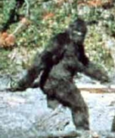 patterson_bigfoot